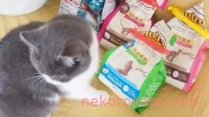 【ニュートロ ナチュラルチョイス】うちの猫の味評価ランキング