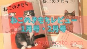 ねこのきもち2021年1・2月号 猫のストレス耐性チェックがピッタリ!【雑誌感想レビュー】