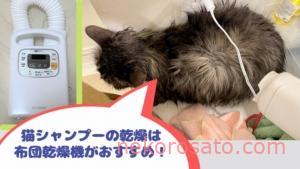 シャンプー後のドライヤーを嫌がる猫には音の小さい布団乾燥機が便利!