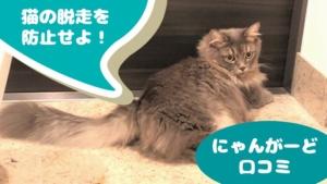 ねこ工房「にゃんがーど」の口コミチェック!猫の脱走防止に効果あり!
