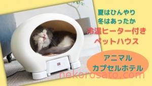 夏も冬も猫が快適温度で暮らせる!?「アニマルカプセルホテル」が登場